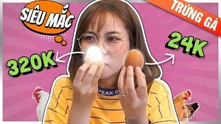 Lần đầu thấy quả trứng 320 Nghìn. Cái kết đắng cho Misthy || WHAT THE FOOD
