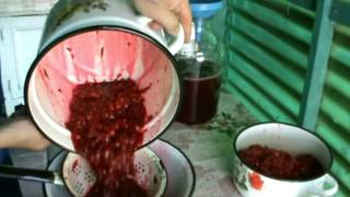 вино вишневое *шипучее*Как сделать шипучее вино дома.