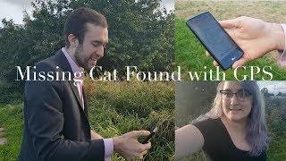 Missing Cat (collar) Found wit…