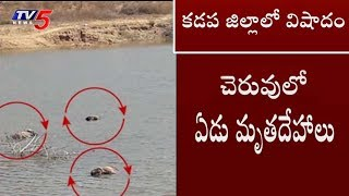 7 Dead Bodies Found in Vontimitta River | Kadapa Dist | TV5 News