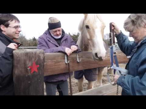 State Line Tack gives back to Seaview Equine Learning Facility!