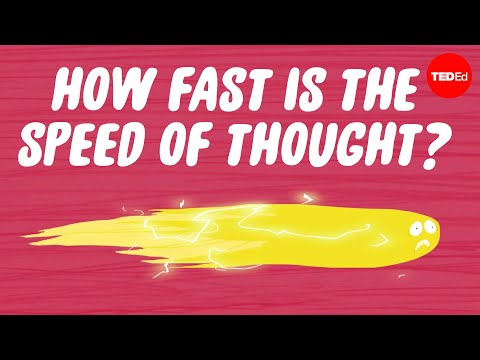 How fast is the speed of thought? - Seena Mathew