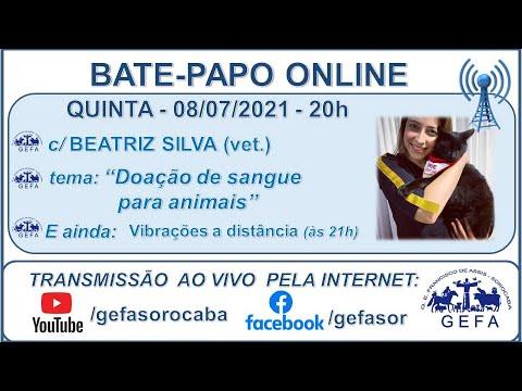 Assista: Palestra Online - c/ BEATRIZ SILVA (08/07/2021)