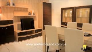 Польская мебель фабрики Forte(Мебель FORTE http://www.mebelpoland.com.ua/category/mebel-forte/ является одной из самых популярных, как в Украине, так и во многих..., 2013-12-29T11:52:01.000Z)
