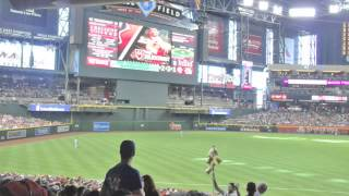 A Visit to Chase Field