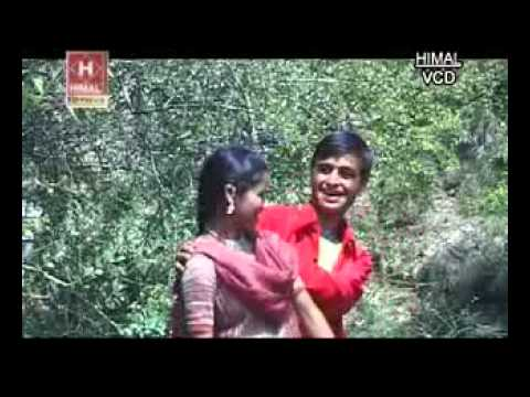 Uttarakhand - 1000 News Result(s)