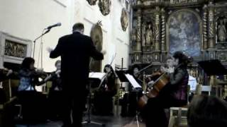 Juraj Jartim: Conservo Grosso, 1st Part, Trnava Chamber Orchestra