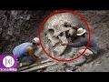 8 Fosil Misterius Yang Pernah Ditemukan Arkeolog