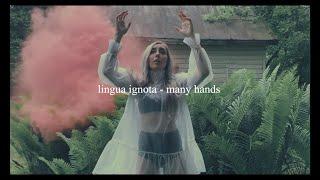 lingua ignota - many hands // español