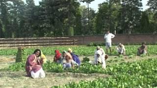 Video Humro Bihar Chhai Pradhan | Bhojpuri Angika Lokgeet | Shravan Saaj download MP3, 3GP, MP4, WEBM, AVI, FLV Oktober 2018