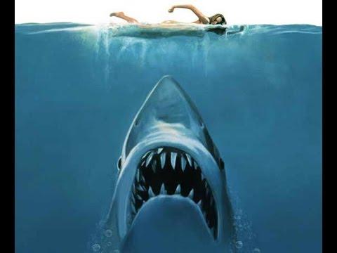 [Film] Musique - Les Dents De La Mer
