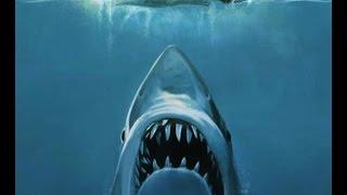 [Film] Musique - Les Dents De La Mer thumbnail