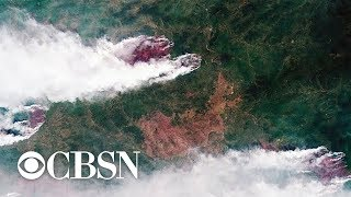Massive Siberia wildfires pose potential threat to climate worldwide