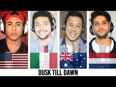 ZAYN - Dusk Till Dawn ft. Sia COVER