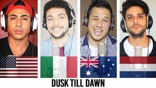 ZAYN - Dusk Till Dawn ft. Sia COVER