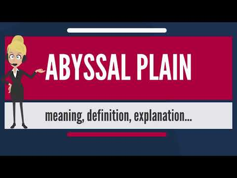 What is ABYSSAL PLAIN? What does ABYSSAL PLAIN mean? ABYSSAL PLAIN meaning & explanation