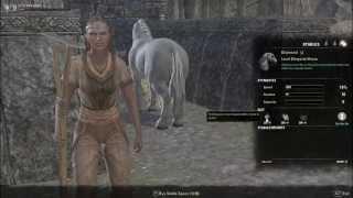 Elder Scrolls Online - Horse Racing