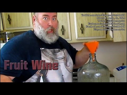 How To Make FRUIT WINE - Day 16,463