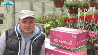 """Большая посылка с интернет-магазина """"Флориум"""". Распаковка."""