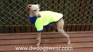 Флисовая кофта для собак