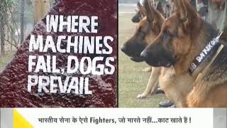 DNA: Watch to know about the 'silent warriors' of Indian Army