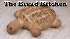 Let's Make A Bread Turtle in The Bread Kitchen
