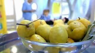 Японская айва. Северный лимон(, 2011-12-02T09:45:55.000Z)