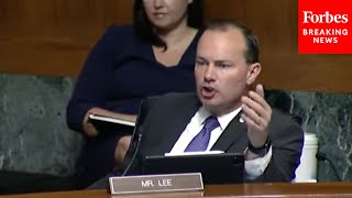 'Are Pharmacies Racist? The Airline Industry -- Is That Racist?': Mike Lee Mocks Voter ID Opposition