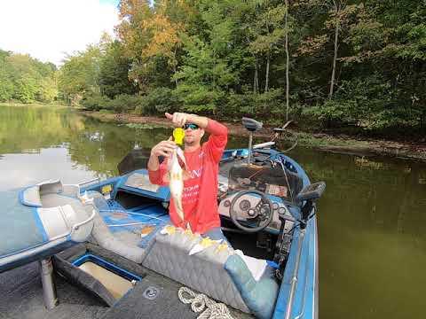 Lake Chesdin 7 Pound Bass #GIANT #bassfishing