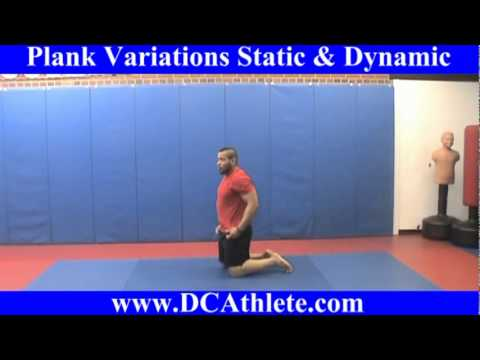 Plank 101 & 201  Variations:  Static and Dynamic
