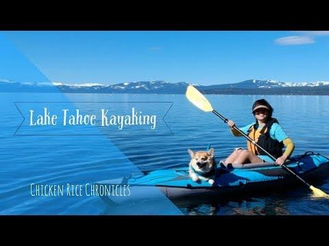 2018 Lake Tahoe with Mindy the Corgi   DJI Spark HD Travel Vlog   Chicken Rice Chronicles