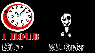 ECHO - W.D. Gaster   1 hour | One Hour of...
