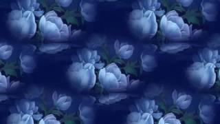 情人的眼淚 。Tears of Love 。Original English Version By James Sia 。Covered By Michiko。