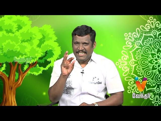 Marunthilla Maruthuvam |Putham Puthu Kalai| (04/07/2017) | [Epi-1038]
