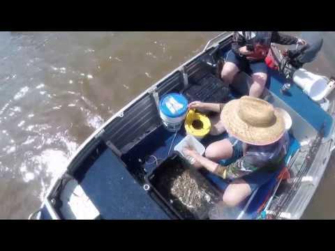Sticko Fishing Adventure: Full video of Prawn Hunter (10KG)