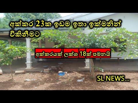අක්කරයක් ලක්ෂ 18 ට ඉඩමක්   Land for sale   house property idam for sale in Sri Lanka   SL NEWS..