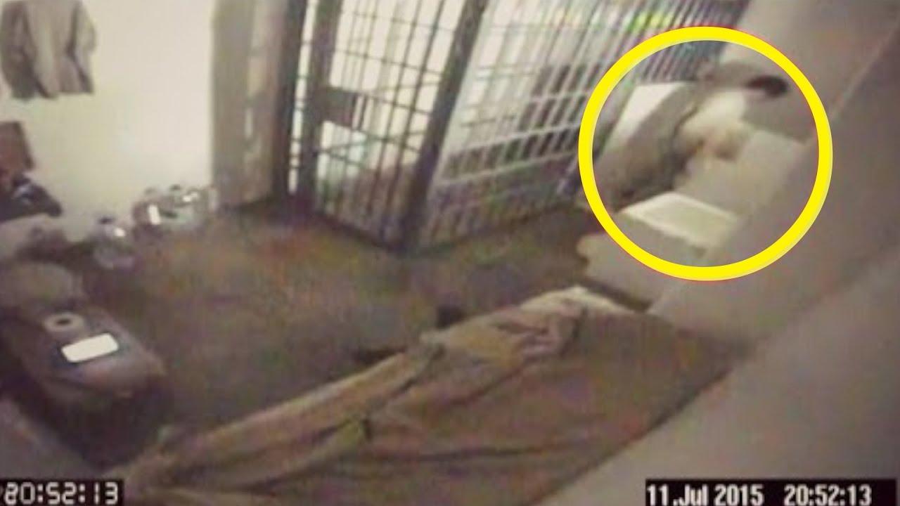 Top 5 Fugas De Prisiones Captadas En Cámara