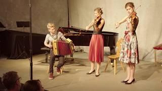 The little fiddle Trio - Waldauf³