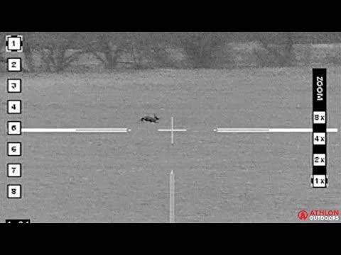 Texas Jackrabbit Hunting Yields 5 Kills In 36 Seconds