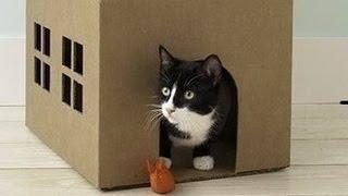 Домик для кошки. Домик для кошки своими руками из картона мастер класс.(Время сэкономить по-крупному! http://vid.io/xoDA Скидки в топовых магазинах! Повышенный кэшбэк! Призы на 1 000 000 рубле..., 2015-05-05T12:53:14.000Z)