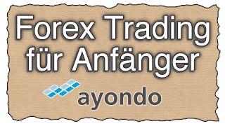 Forex Trading für Anfänger   Social Trading