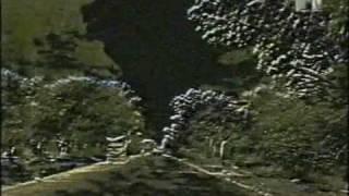 SOLEA AMPHIBIA - Virtual Sine Wave