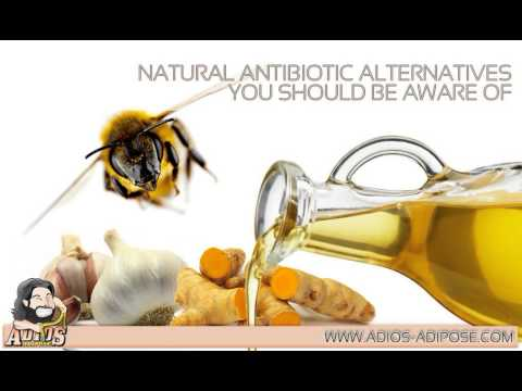 Adios-Adipose.com: Natural Antibiotic Alternatives You Should Be Aware Of