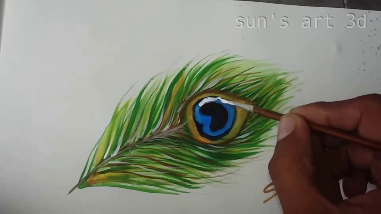How to draw beautiful peacock feather for beginners youtube - Beautiful peacock feather ...