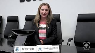 Balanço vereadores 2018 - Alessandra Lucchesi (PSDB)