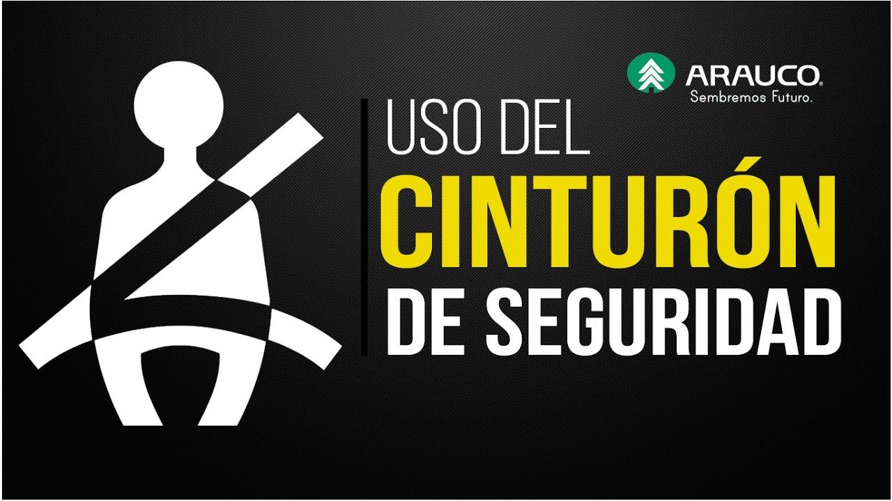 Uso Del Cinturón De Seguridad CPHS Arauco