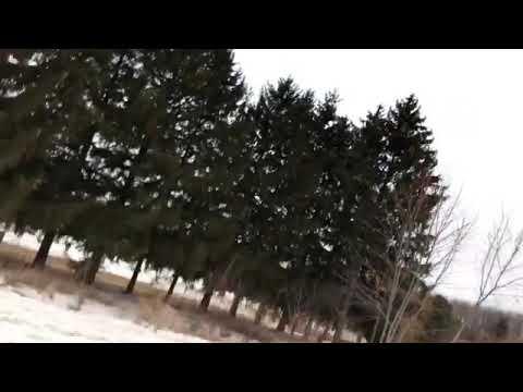 Wintertime - 4 Door (snippet)