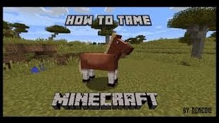 Minecraft Pc Edition: HOW TO TAME/TRAIN A HORSE!?!