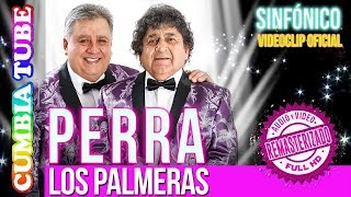Baixar Los Palmeras - Perra | Sinfónico | Audio y Video Remasterizado Full HD | Cumbia Tube