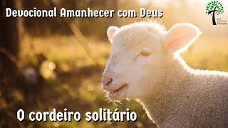 O cordeiro solitário // Amanhecer com Deus // Igreja Presbiteriana Floresta - GV